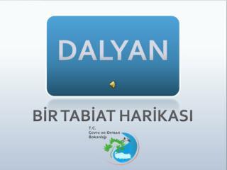 Güney Batı Akdeniz'de kalan Dalyan, konum olarak Fethiye ve Marmaris arasında kalmaktadır.