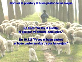 Jesús es la puerta y el buen pastor de las ovejas