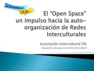"""El """"Open  Space """"                   un impulso hacia la auto-organización de Redes Interculturales"""