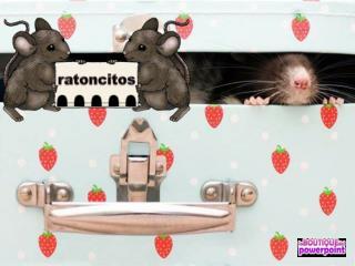 Un ratón nunca confía su vida a un único agujero.