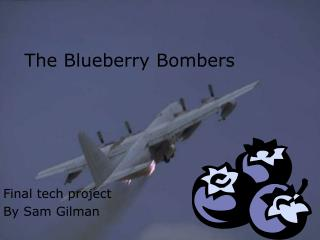 The Blueberry Bombers