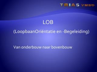 LOB ( LoopbaanOriëntatie  en -Begeleiding ) Van  onderbouw naar bovenbouw
