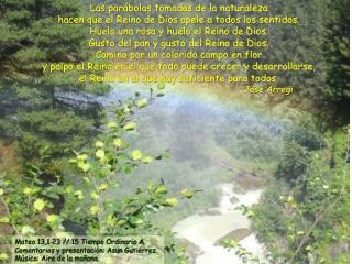 Las par�bolas tomadas de la naturaleza  hacen que el Reino de Dios apele a todos los sentidos.