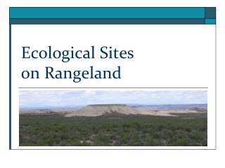 Ecological Sites on Rangeland