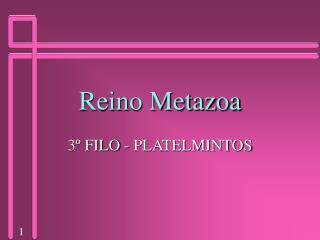 Reino Metazoa