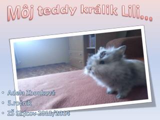 Môj  t eddy  králik  Lili ...