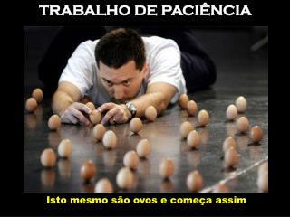 TRABALHO DE PACIÊNCIA