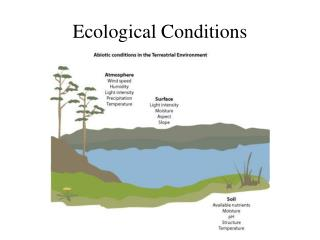 Ecological Conditions