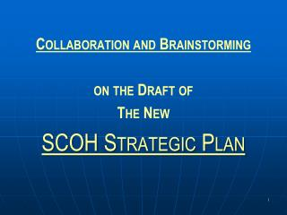Collaboration and Brainstorming  on the Draft of The New SCOH Strategic Plan