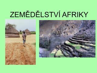 ZEMĚDĚLSTVÍ AFRIKY