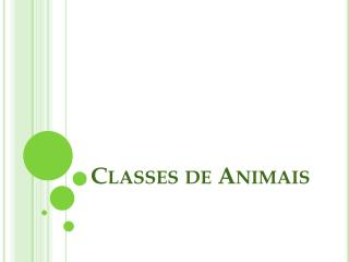 Classes de Animais