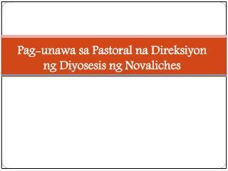Pag-unawa sa Pastoral na Direksiyon  ng Diyosesis ng Novaliches