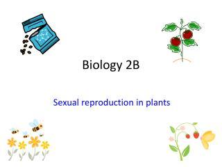 Biology 2B