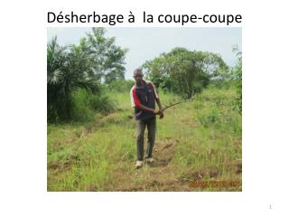 D�sherbage �  la coupe-coupe