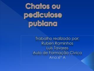 Trabalho realizado por: Ruben Raminhos  Luís Tavares Aula de Formação Cívica Ano:6ª A