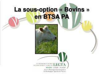 La sous-option � Bovins � en BTSA PA