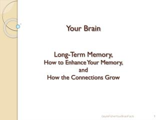 Your Brain Long-Term Memory, How to Enhance Your Memory, and How the Connections Grow