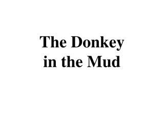 The Donkey  in the Mud