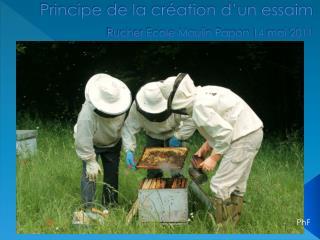 Principe de la création d'un essaim  Rucher Ecole Moulin Papon 14 mai 2011