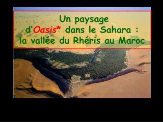 Un paysage d' Oasis *  dans le Sahara :  la vallée du Rhéris au Maroc