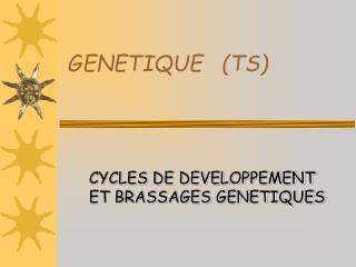 GENETIQUE   (TS)