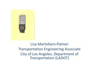 Lisa Martellaro-Palmer Transportation Engineering Associate