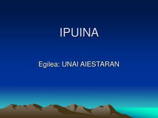 IPUINA