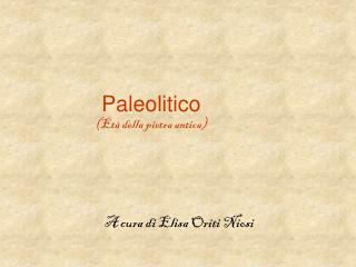 Paleolitico (Età della pietra antica)