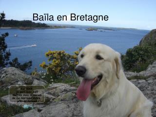 Baïla en Bretagne