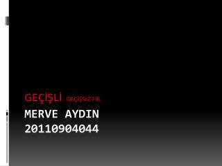 MERVE AYDIN 20110904044