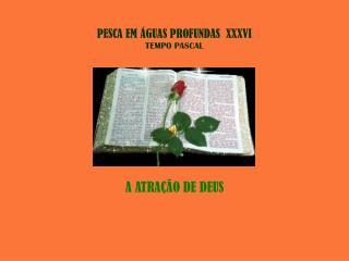 PESCA EM ÁGUAS PROFUNDAS  XXXVI TEMPO PASCAL