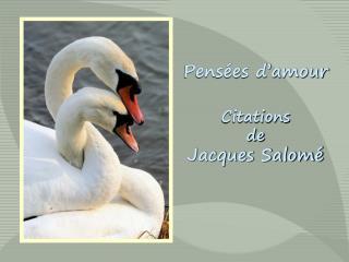 Pens�es d�amour Citations de Jacques Salom�