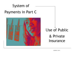 S ystem of Payments in Part C