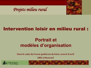 Intervention loisir en milieu rural : Portrait et  modèles d'organisation