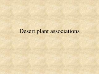 Desert plant associations
