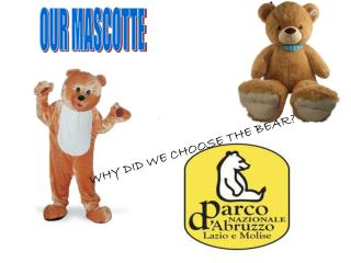 WHY DID WE CHOOSE THE BEAR?