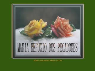 MARIA REFÚGIO DOS PECADORES