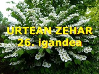 URTEAN ZEHAR 26.  igandea
