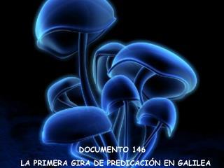 DOCUMENTO 146