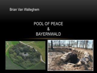Pool of  peace & Bayernwald