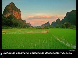 """"""" Natura ne aseamănă, educaţia ne deosebeşte . """"  Confucius ."""