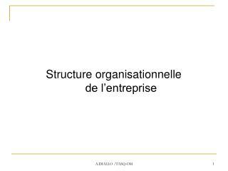 Structure organisationnelle de l'entreprise