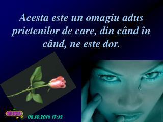Acesta este un omagiu adus prietenilor de care, din c â nd  î n c â nd, ne este dor.