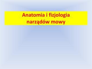 Anatomia i fizjologia  narządów mowy