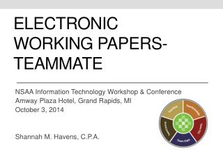 Electronic Working Papers- Teammate