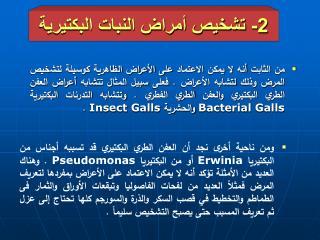 2-  تشخيص أمراض النبات البكتيرية