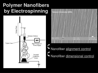 Polymer Nanofibers by Electrospinning