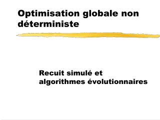 Optimisation globale non déterministe