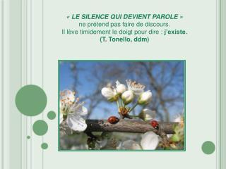 « LE SILENCE QUI DEVIENT PAROLE » ne prétend pas faire de discours.