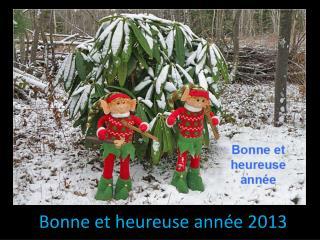 J Bonne  et heureuse année 2013